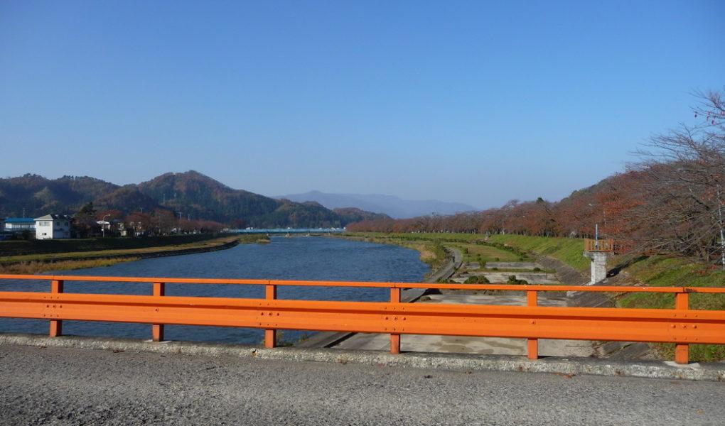 Вид с моста на аллею сакур