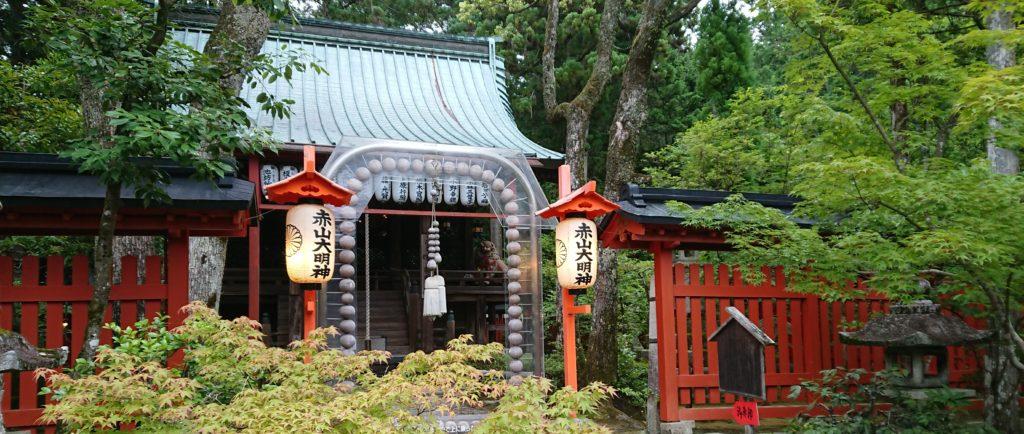 Поездка В.И. Грачёва (6 дан) в Японию