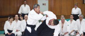 Завершился XXV международный семинар сихана Сёдзи Сэки, 8 дан