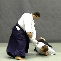 jodan tsuki ikkyo